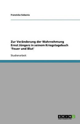 Zur Veranderung Der Wahrnehmung Ernst Jungers in Seinem Kriegstagebuch 'Feuer Und Blut' (Paperback)