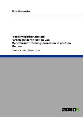 Prozemodellierung Und Parameteridentifikation Von Mehrphasenstromungsprozessen in Porosen Medien (Paperback)