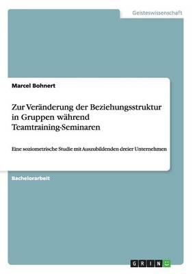 Zur Veranderung Der Beziehungsstruktur in Gruppen Wahrend Teamtraining-Seminaren (Paperback)