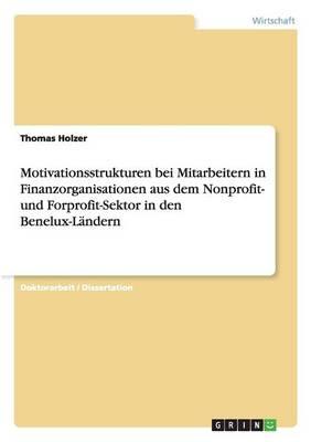 Motivationsstrukturen Bei Mitarbeitern in Finanzorganisationen Aus Dem Nonprofit- Und Forprofit-Sektor in Den Benelux-Landern (Paperback)