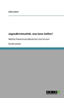 Jugendkriminalitat, Was Kann Helfen? (Paperback)