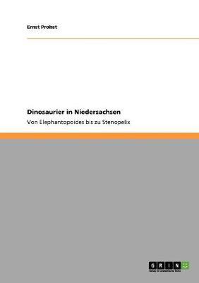 Dinosaurier in Niedersachsen (Paperback)