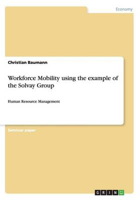 Workforce Mobility Using the Example of the Solvay Group (Paperback)