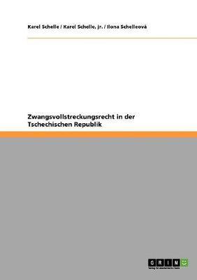Zwangsvollstreckungsrecht in Der Tschechischen Republik (Paperback)