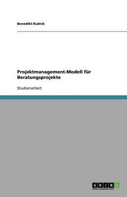 Projektmanagement-Modell Fur Beratungsprojekte (Paperback)