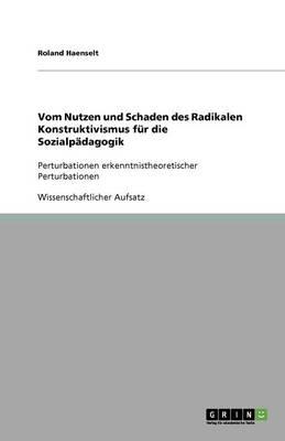 Vom Nutzen Und Schaden Des Radikalen Konstruktivismus Fur Die Sozialpadagogik (Paperback)