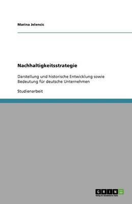 Nachhaltigkeitsstrategie (Paperback)