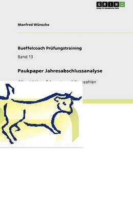 Paukpaper Jahresabschlussanalyse (Paperback)