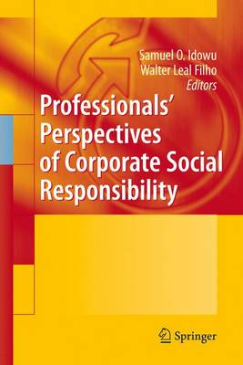 Professionals' Perspectives of Corporate Social Responsibility (Hardback)