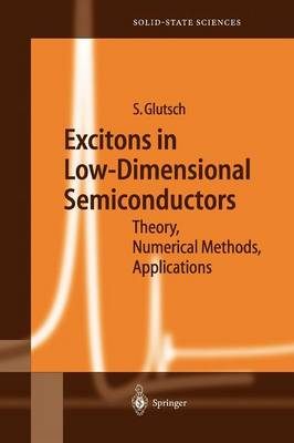 Excitons in Low-Dimensional Semiconductors: Theory Numerical Methods Applications - Springer Series in Solid-State Sciences 141 (Paperback)