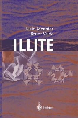 Illite: Origins, Evolution and Metamorphism (Paperback)