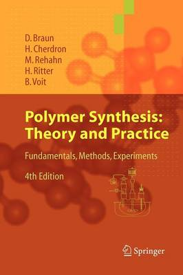Polymer Synthesis: Theory and Practice (Paperback)