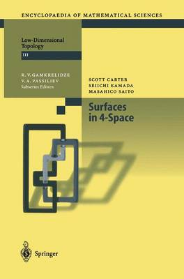 Surfaces in 4-Space - Encyclopaedia of Mathematical Sciences 142 (Paperback)