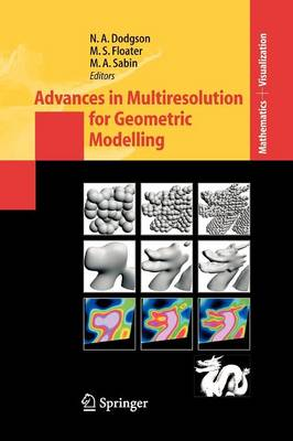 Advances in Multiresolution for Geometric Modelling - Mathematics and Visualization (Paperback)