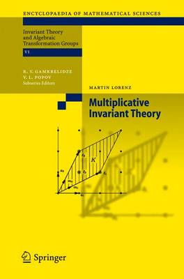 Multiplicative Invariant Theory - Encyclopaedia of Mathematical Sciences 135 (Paperback)