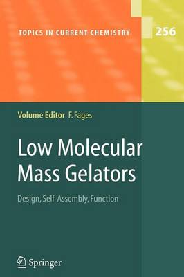 Low Molecular Mass Gelators: Design, Self-Assembly, Function - Topics in Current Chemistry 256 (Paperback)