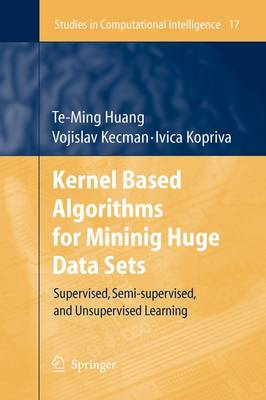 Kernel Based Algorithms for Mining Huge Data Sets: Supervised, Semi-supervised, and Unsupervised Learning - Studies in Computational Intelligence 17 (Paperback)