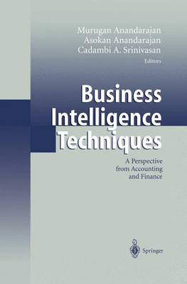 Business Intelligence Techniques: A Perspective from Accounting and Finance (Paperback)