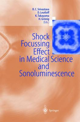 Shock Focussing Effect in Medical Science and Sonoluminescence (Paperback)