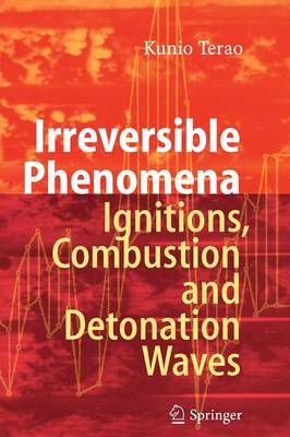 Irreversible Phenomena: Ignitions, Combustion and Detonation Waves (Paperback)