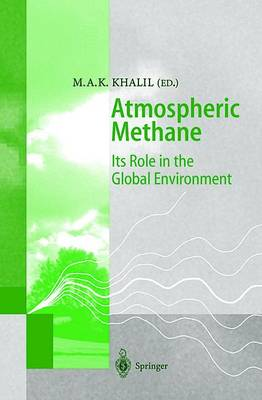 Atmospheric Methane: Its Role in the Global Environment (Paperback)