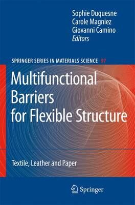 Multifunctional Barriers for Flexible Structure: Textile, Leather and Paper - Springer Series in Materials Science 97 (Paperback)