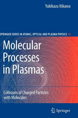Molecular Processes in Plasmas: Collisions of Charged Particles with Molecules - Springer Series on Atomic, Optical, and Plasma Physics 43 (Paperback)