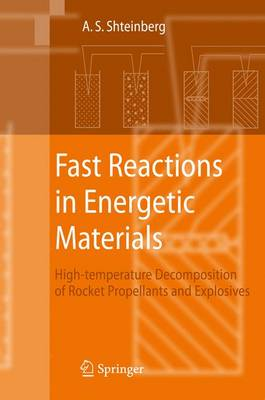 Fast Reactions in Energetic Materials: High-Temperature Decomposition of Rocket Propellants and Explosives (Paperback)