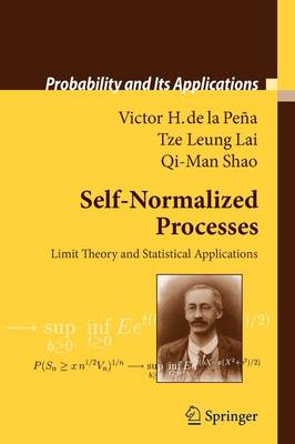 Self-Normalized Processes: Limit Theory and Statistical Applications - Probability and Its Applications (Paperback)