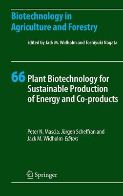 Plant Biotechnology for Sustainable Production of Energy and Co-products - Biotechnology in Agriculture and Forestry 66 (Hardback)
