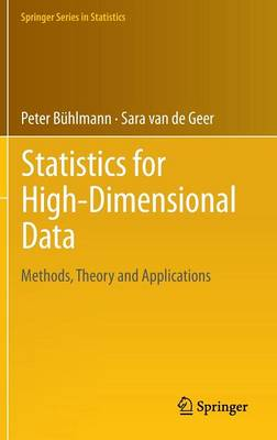 Statistics for High-Dimensional Data: Methods, Theory and Applications - Springer Series in Statistics (Hardback)