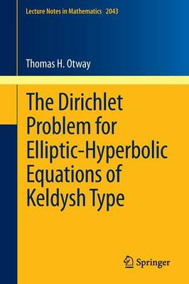 The Dirichlet Problem for Elliptic-Hyperbolic Equations of Keldysh Type - Lecture Notes in Mathematics 2043 (Paperback)