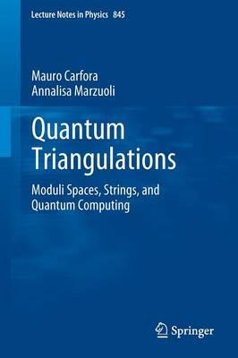Quantum Triangulations: Moduli Spaces, Strings, and Quantum Computing - Lecture Notes in Physics 845 (Paperback)