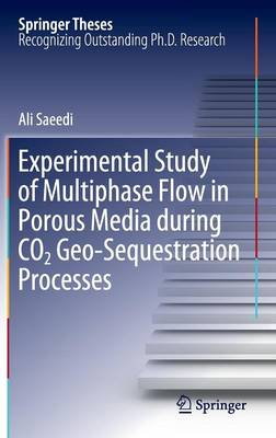 Experimental Study of Multiphase Flow in Porous Media during CO2 Geo-Sequestration Processes - Springer Theses (Hardback)