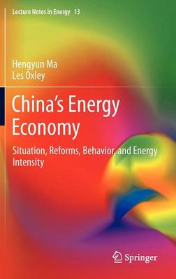 China's Energy Economy: Situation, Reforms, Behavior, and Energy Intensity - Lecture Notes in Energy 13 (Hardback)