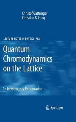 Quantum Chromodynamics on the Lattice: An Introductory Presentation - Lecture Notes in Physics 788 (Paperback)
