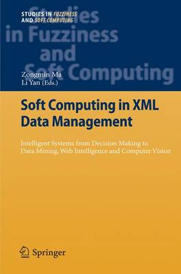 Soft Computing in XML Data Management: Intelligent Systems from Decision Making to Data Mining, Web Intelligence and Computer Vision - Studies in Fuzziness and Soft Computing 255 (Paperback)