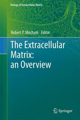 The Extracellular Matrix: an Overview - Biology of Extracellular Matrix (Paperback)
