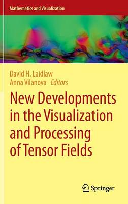 New Developments in the Visualization and Processing of Tensor Fields - Mathematics and Visualization (Hardback)
