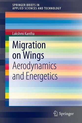 Migration on Wings: Aerodynamics and Energetics - SpringerBriefs in Applied Sciences and Technology (Paperback)