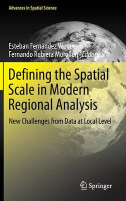 Defining the Spatial Scale in Modern Regional Analysis: New Challenges from Data at Local Level - Advances in Spatial Science (Hardback)
