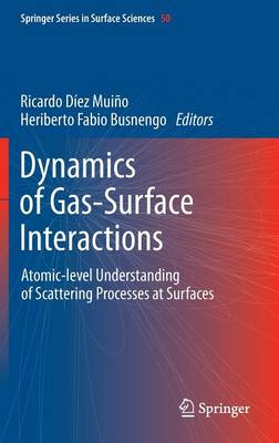 Dynamics of Gas-Surface Interactions: Atomic-level Understanding of Scattering Processes at Surfaces - Springer Series in Surface Sciences 50 (Hardback)