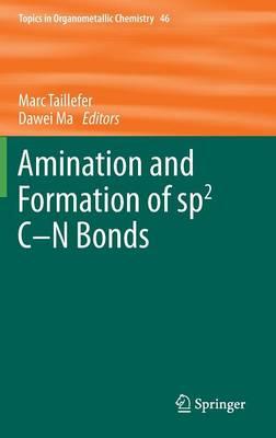 Amination and Formation of sp2 C-N Bonds - Topics in Organometallic Chemistry 46 (Hardback)