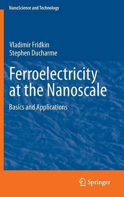 Ferroelectricity at the Nanoscale: Basics and Applications - NanoScience and Technology (Hardback)
