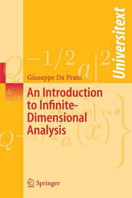 An Introduction to Infinite-Dimensional Analysis - Universitext (Paperback)