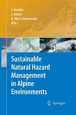 Sustainable Natural Hazard Management in Alpine Environments (Paperback)