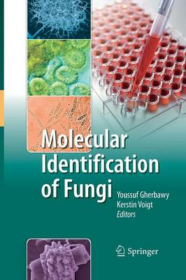 Molecular Identification of Fungi (Paperback)