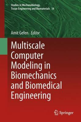 Multiscale Computer Modeling in Biomechanics and Biomedical Engineering - Studies in Mechanobiology, Tissue Engineering and Biomaterials 14 (Paperback)