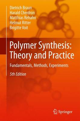 Polymer Synthesis: Theory and Practice: Fundamentals, Methods, Experiments (Paperback)