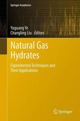Natural Gas Hydrates: Experimental Techniques and Their Applications - Springer Geophysics (Paperback)